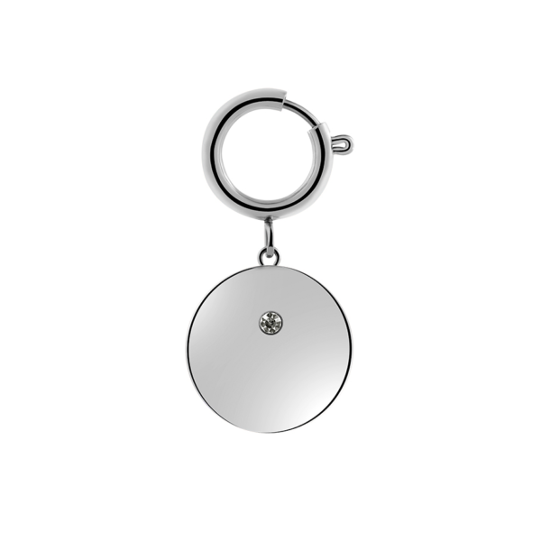 Shiny Pet Coin Big Silber Fafe Collection